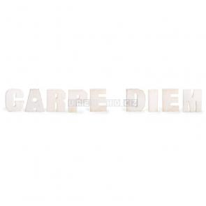 Carpe diem dekorace nápis