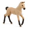 Schleich Horse Club 13929 Hannoverské hříbě, Plavka